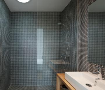 Ng services installateur expert velux artip le - Velux salle de bain ...